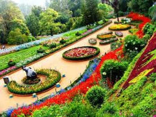More About Government Botanical Gardens, Ooty And Historical Information