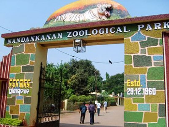 Nandankanan zoological park timings, bhubaneswar. Location