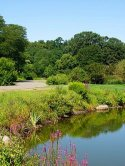 Arnold Arboretum of Harvard University visiting hours